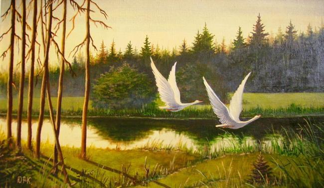 Два лебедя взлетают рано утром над лесным озером